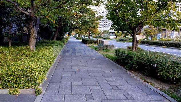 アイランドセンター駅周辺の景色