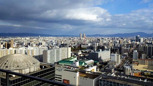 アゴーラリージェンシー堺の高層階風景
