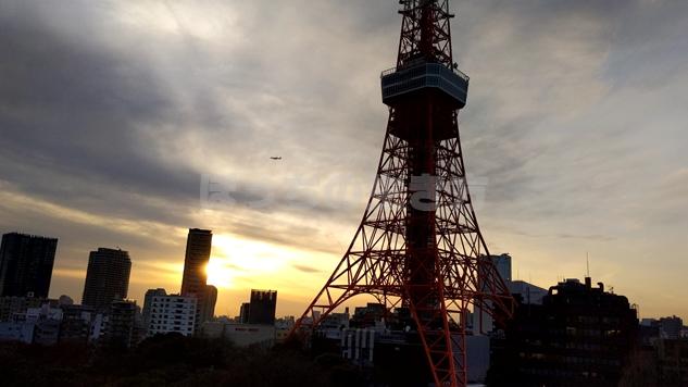 夕方の東京タワー