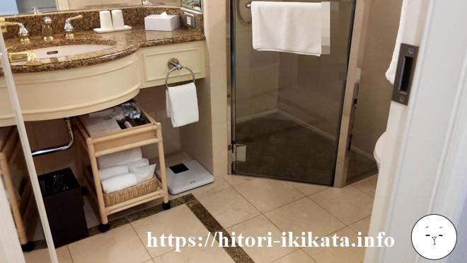 デラックスダブルルームのシャワースペース