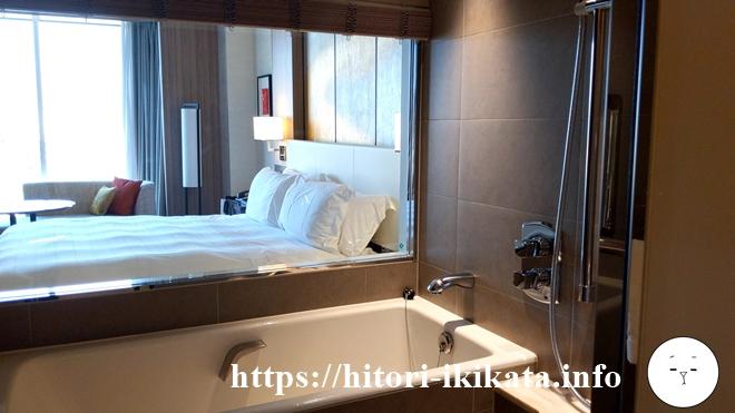シェラトン都ホテル東京のクラブフロアバスルームの眺望