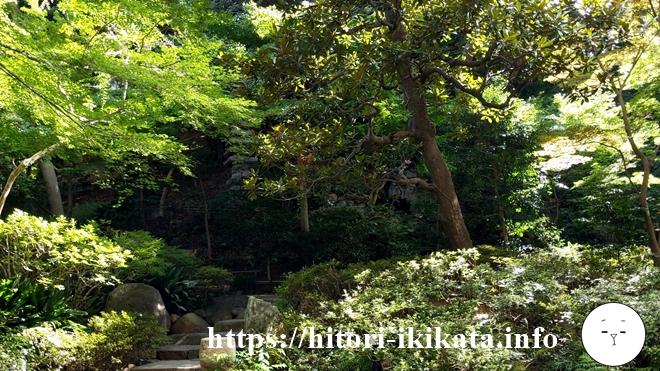 シェラトン都ホテル東京の庭園の樹木